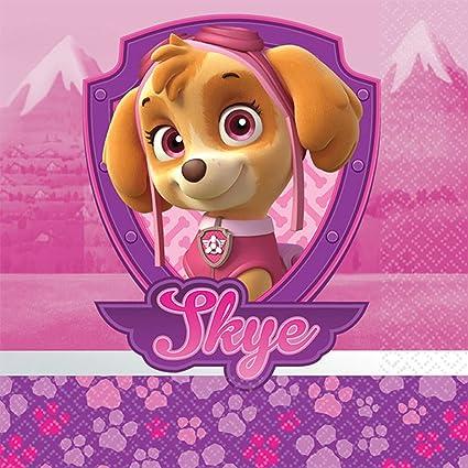 Pink Skye Paw Patrol Mantel Mantel Fiesta