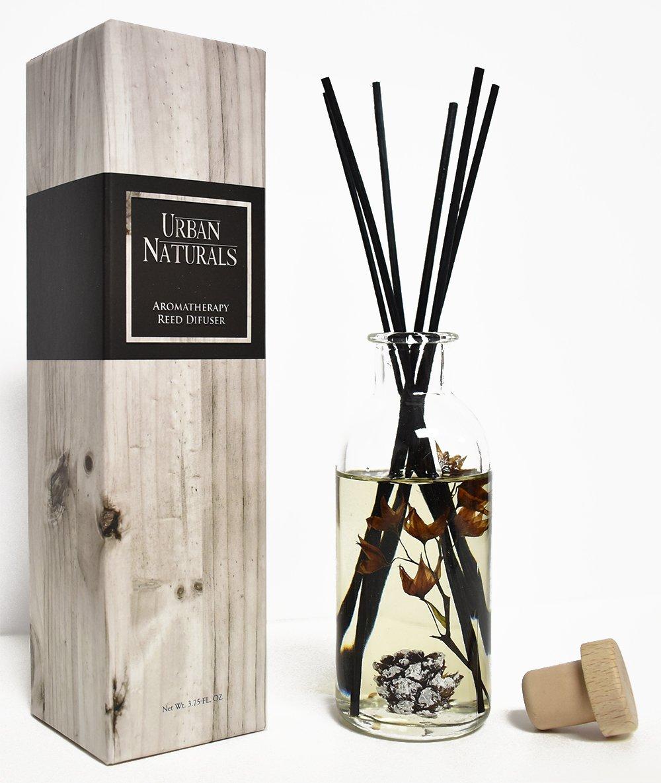 Urban Naturals Mountain Air Scented Fragrance Oil Reed Diffuser & Room Freshener | Golden Apples, Birch Wood Cashmere, Fennel & Cedar | Decorative Botanicals | Vegan |