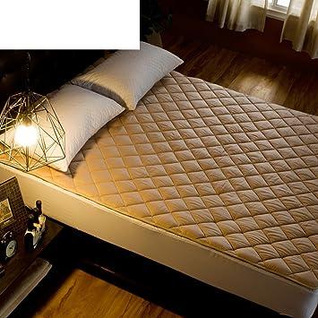Amazon Com Gjltgfdltujg Tatami Mattress Bed Mattress Student