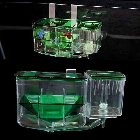 Exing Acuario pecera Tank Cría Aislamiento Caja de Aislamiento Pescado criadero Hatchery Breaking Box: Amazon.es: Productos para mascotas
