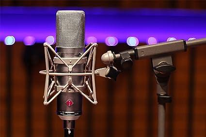 Stam Audio SA-87 - Micrófono de consensador