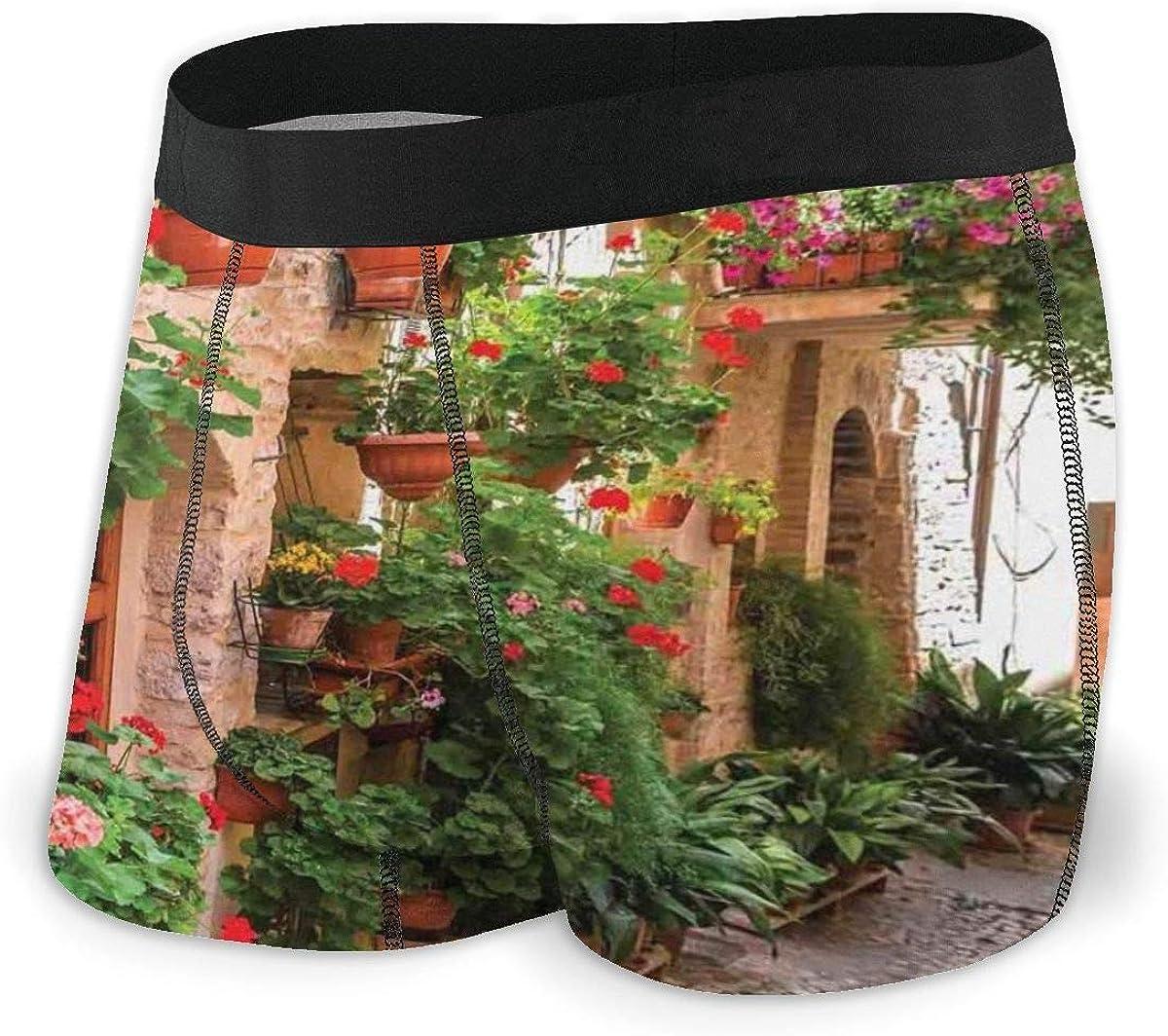 Web--ster Calzoncillos bóxer para Hombre, Vista a la Calle de una pequeña Ciudad renacentista con porches Florales y Roca mediterránea Talla L