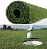 · Petgrow · Pro Putting Green Golf Artificial Grass Turf - Indoor Outdoor Golf Training Mat, Synthetic Fake Grass for…