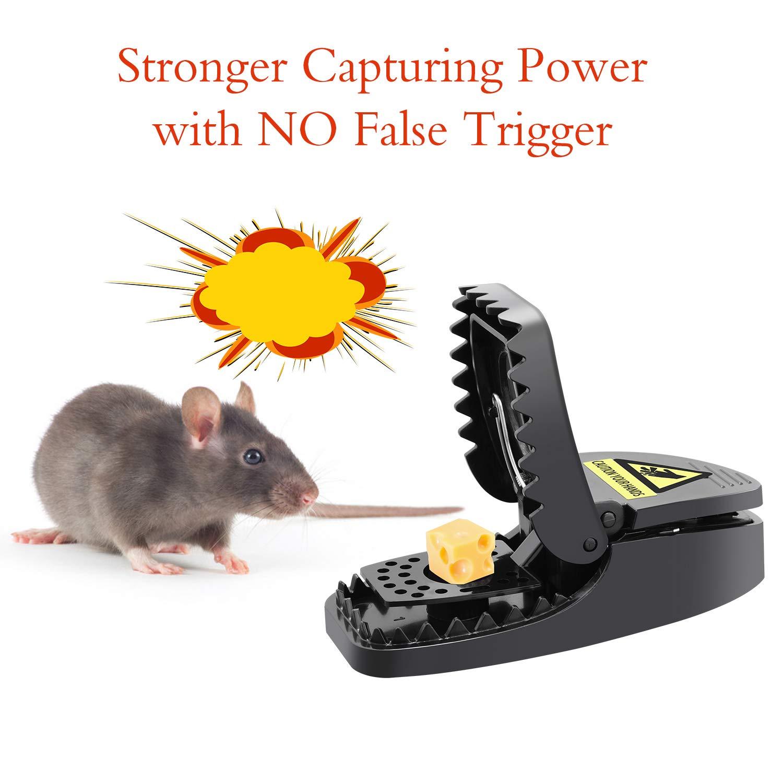Charlemain Mäusefallen Schlagfalle aus Kunststoff(6 Pack), effektive Rattenfalle, Super einfaches Aufstellen, kraftigen Schlag, Ökologisch und wiederverwendbar, Tötungsfallen