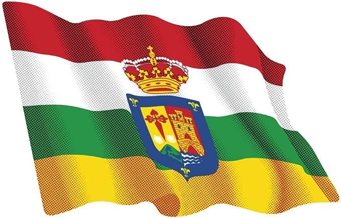 Artimagen Pegatina Bandera Ondeante Murcia 80x60 mm.
