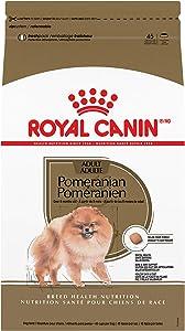 Royal Canin Breed Health Nutrition Pomeranian Adult Dry Dog Food