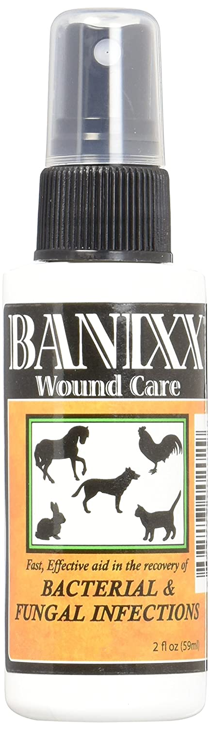 Wound care in pets