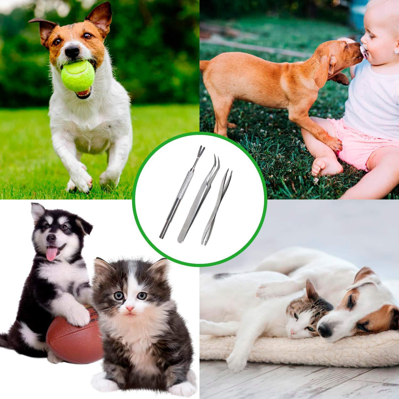 XUNKE Pinza per Zecche Gancio per Zecche Acciaio Inossidabile di qualit/à Professionale Rimozione delle Zecche Rimozione Zecche per Cani e Gatti