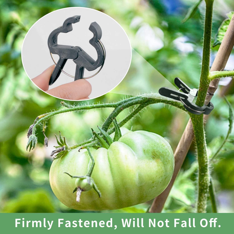 HIMETSUYA 220PCS Clips para Plantas de jardín, Clips Reutilizables ...