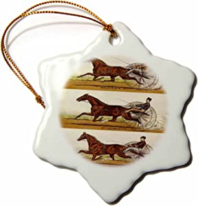 3dRose ORN_58546_1 Old Time Harness Racing Snowflake Ornament, Porcelain, 3-Inch