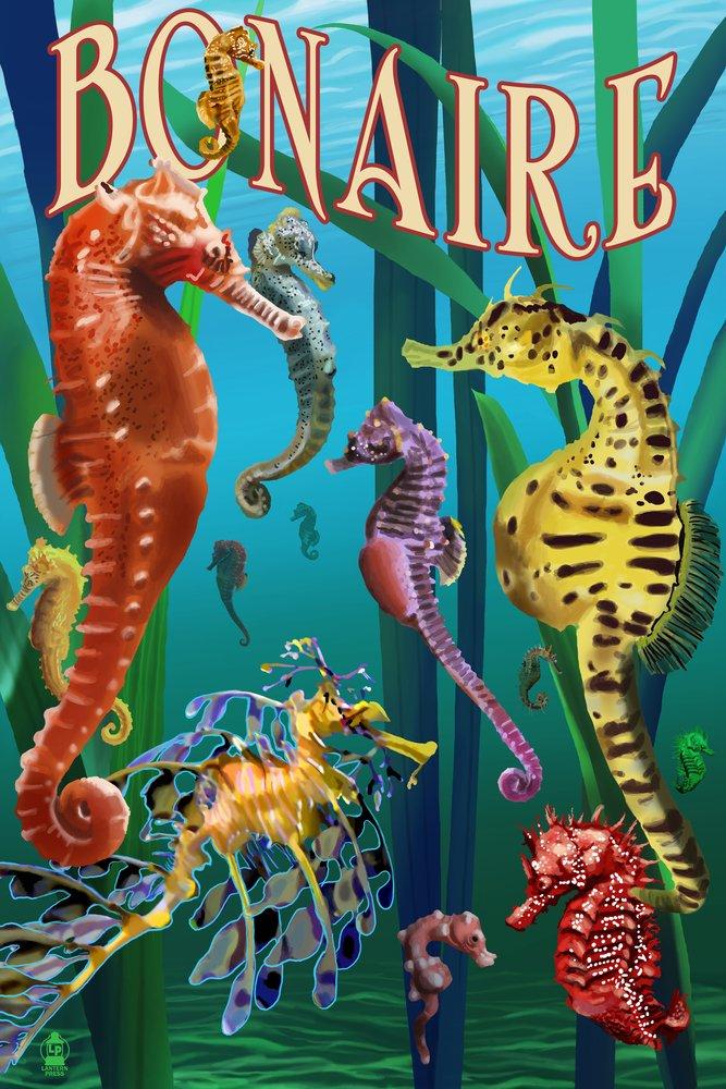 ボネール島、オランダCaribbean – 竜の落とし子 36 x 54 Giclee Print LANT-50715-36x54 B017E9RVTC  36 x 54 Giclee Print