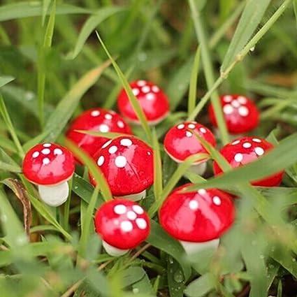 Miniature Garden Decor   10 Pieces Mini Red Mushroom Garden Ornament  Miniature Plant Pots Fairy DIY