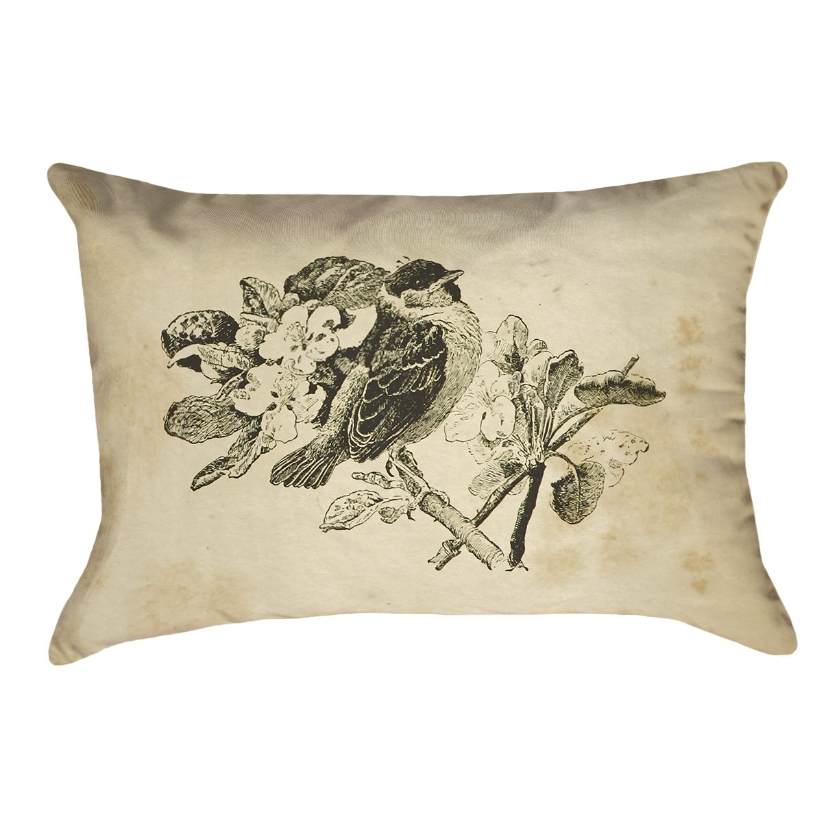 ArtVerse Katelyn Smith 26 x 26 Spun Polyester Double Sided Print with Concealed Zipper /& Insert Vintage Sepia Bird Pillow SMI133P2626B