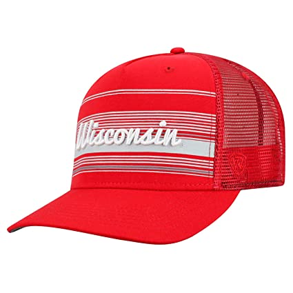592f460b276 Amazon.com   Top of the World Wisconsin Badgers Official NCAA ...