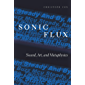 Sonic Flux: Sound, Art, and Metaphysics (English Edition)