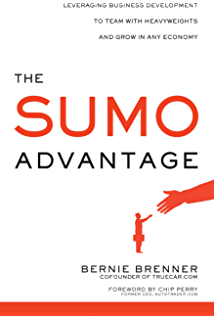 Amazon what exactly is business development a primer on the sumo advantage leveraging business development to team with heavyweights and grow in any economy malvernweather Choice Image