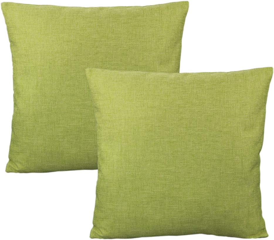 All Smiles Green Throw Pillow Covers for Outdoor Patio Furniture Square Light Grass Sage Apple Green Cushion for Sofa Bed Couch Sunbrella Decorations Seat 18x18 Set of 2