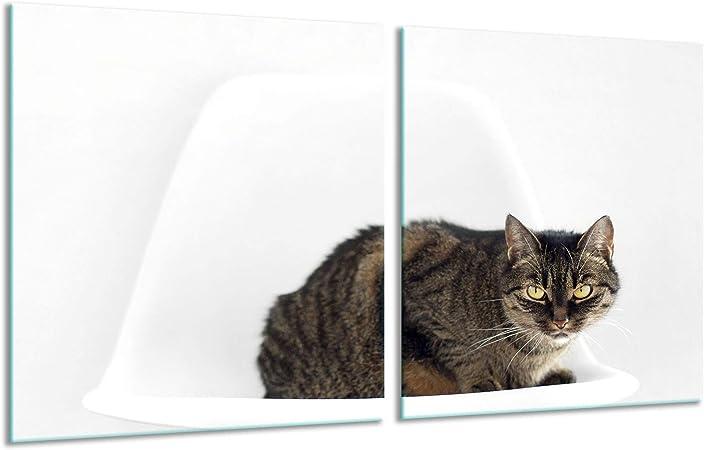 Placa para Cubrir la vitrocerámica, 2 Piezas, 2 x 40 x 52, diseño de Gato, Color Negro, Placas de inducción.: Amazon.es: Hogar