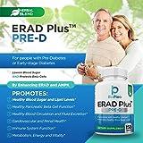 ERAD Plus Pre-D for Healthy Pancreatic Beta Cell