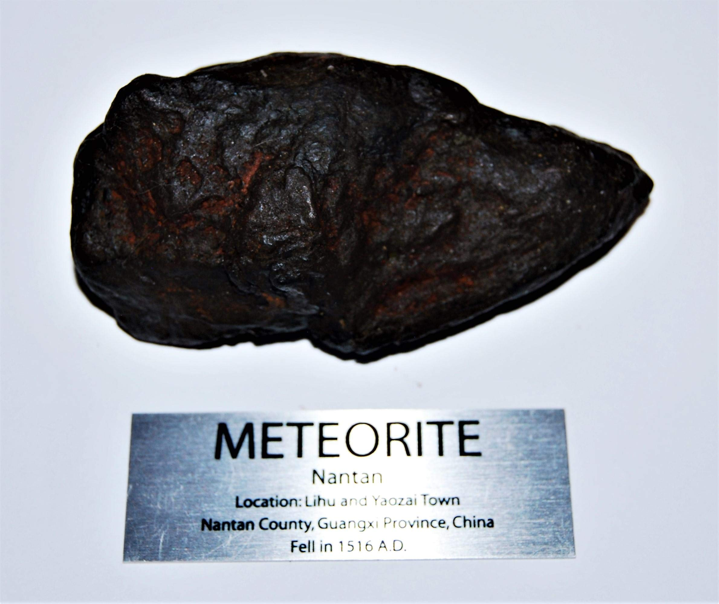 Fossil, Meteorites, & More NANTAN Iron Nickel Meteorite -Genuine-481.9 Gram + Label & COA# 14348 20o by Fossil, Meteorites, & More (Image #1)