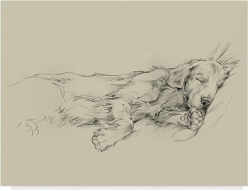Trademark Fine Art Dog Days III