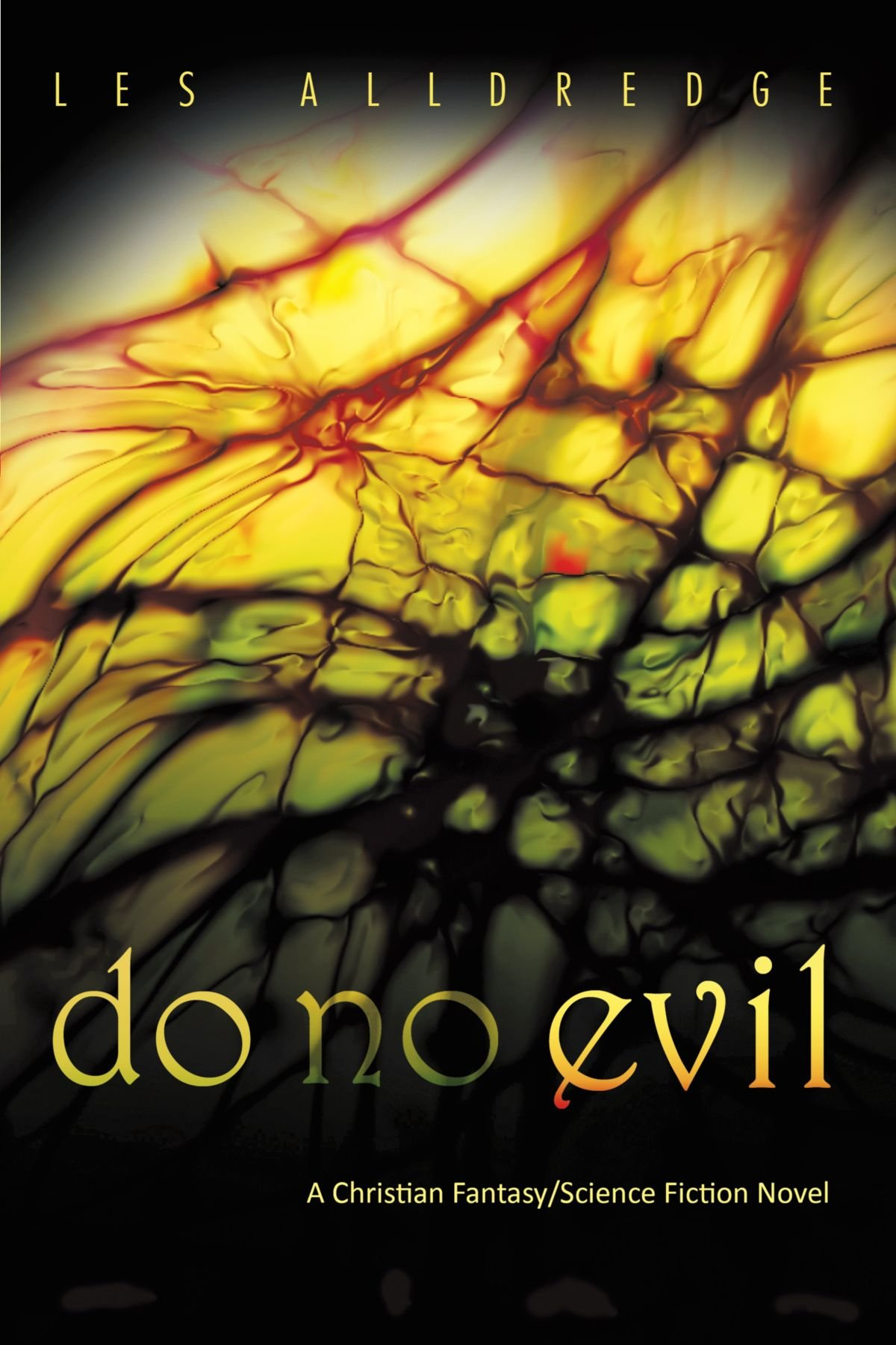 Do No Evil PDF
