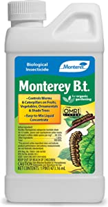 Monterey LG6332 Bacillus Thuringiensis (B.t.) Worm & Caterpillar Killer Insecticide/Pesticide Treatment Concentrate, 16 oz
