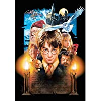 Leezeshaw 5D DIY Diamond Painting By Number Kits Fameless Rhinestone Embroidery Paintings Pictures For Home Decor - Harry Potter(11.8x15.7inch/30x40cm)