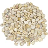 "Decorative Ornamental River Pebbles Rocks for Fresh Water Fish Animal Plant Aquariums, Landscaping, Home Decor etc, Light Color, 5lbs, 0.8""-1.2"""
