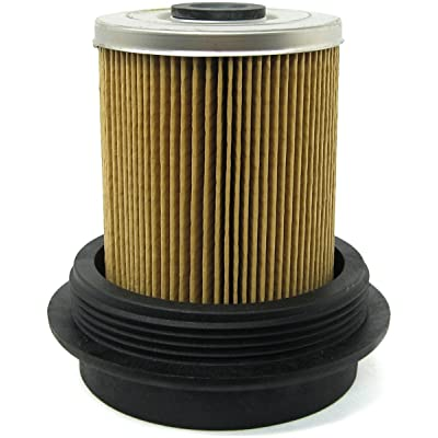 Luber-finer L4595F Heavy Duty Fuel Filter, 1 Pack: Automotive