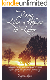 Pray, Like a Woman in Labor: 14 Days of Prayer for Mothers