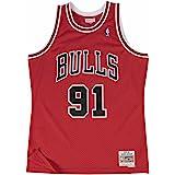 Amazon.com : Chicago Bulls #91 Dennis Rodman NBA Soul Swingman ...
