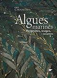Les algues marines : propriétés, usages, recettes