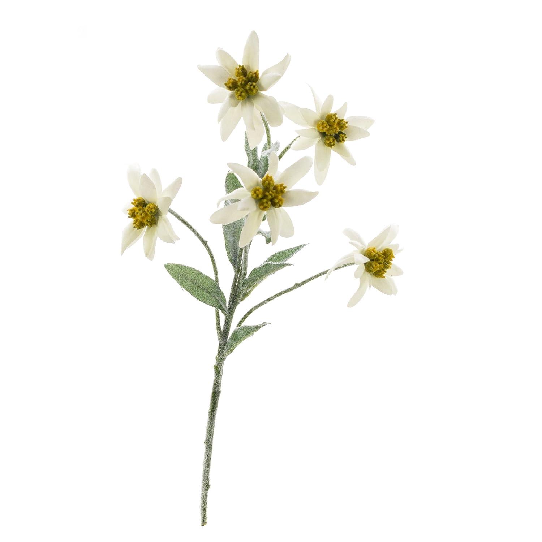 artplants Lot 3 x Edelweiss Artificielle Sophia avec 5 Fleurs, Blanc, 40 cm - 3 Pcs Fleur Artificielle/Fausse Fleur