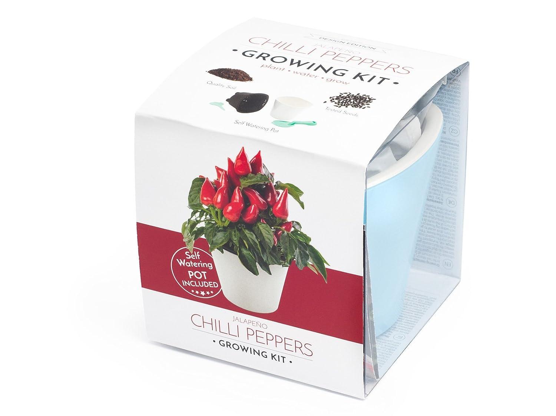 Züchten Sie Jalapeño (chilli peppers growing kit) Domestico, All-In-One-Set (Blau) VISO TRADE