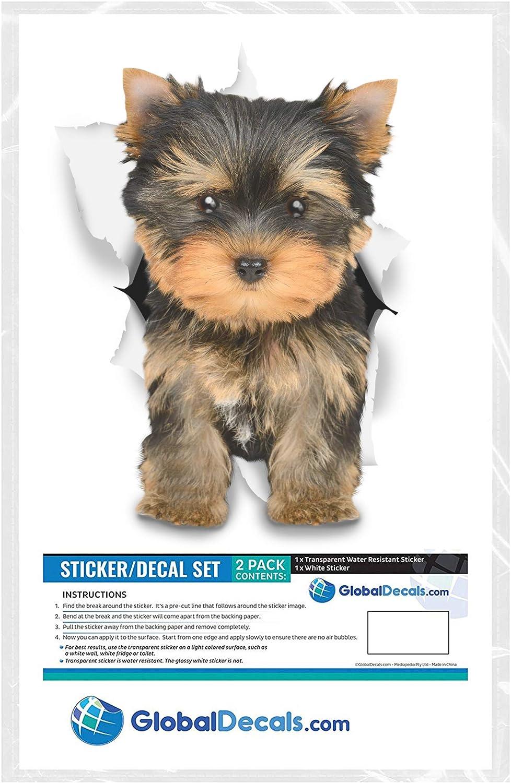 Winston /& Bear Perro 3D pegatinas pegatinas de Husky de nevera Pack 2 Yorkie Adorable para la pared