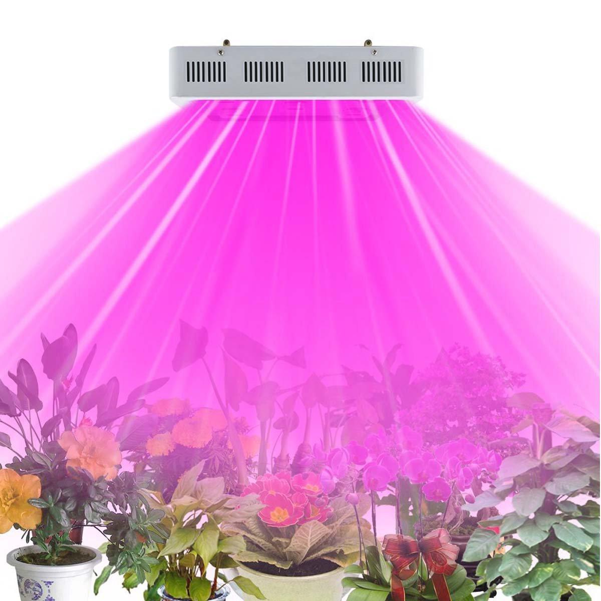 Amazon.com : HollandStar LED Grow Light Full Spectrum 1000 Watt ...