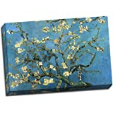 Azul Turquesa Almendro en flor de Van Gogh lienzo A1Póster 30x 20cm)