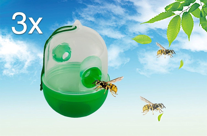 abeilles gu pes et frelons profitez de la livraison. Black Bedroom Furniture Sets. Home Design Ideas