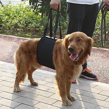Zouminy Arnés para Rehabilitación con Asa para Perros de Ayuda ...