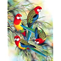 SODIAL Diy 5D Diamond Painting Animals Parrots Circular Drill Embroidery Cross Stitch Rhinestone Decoration Painting Hobby