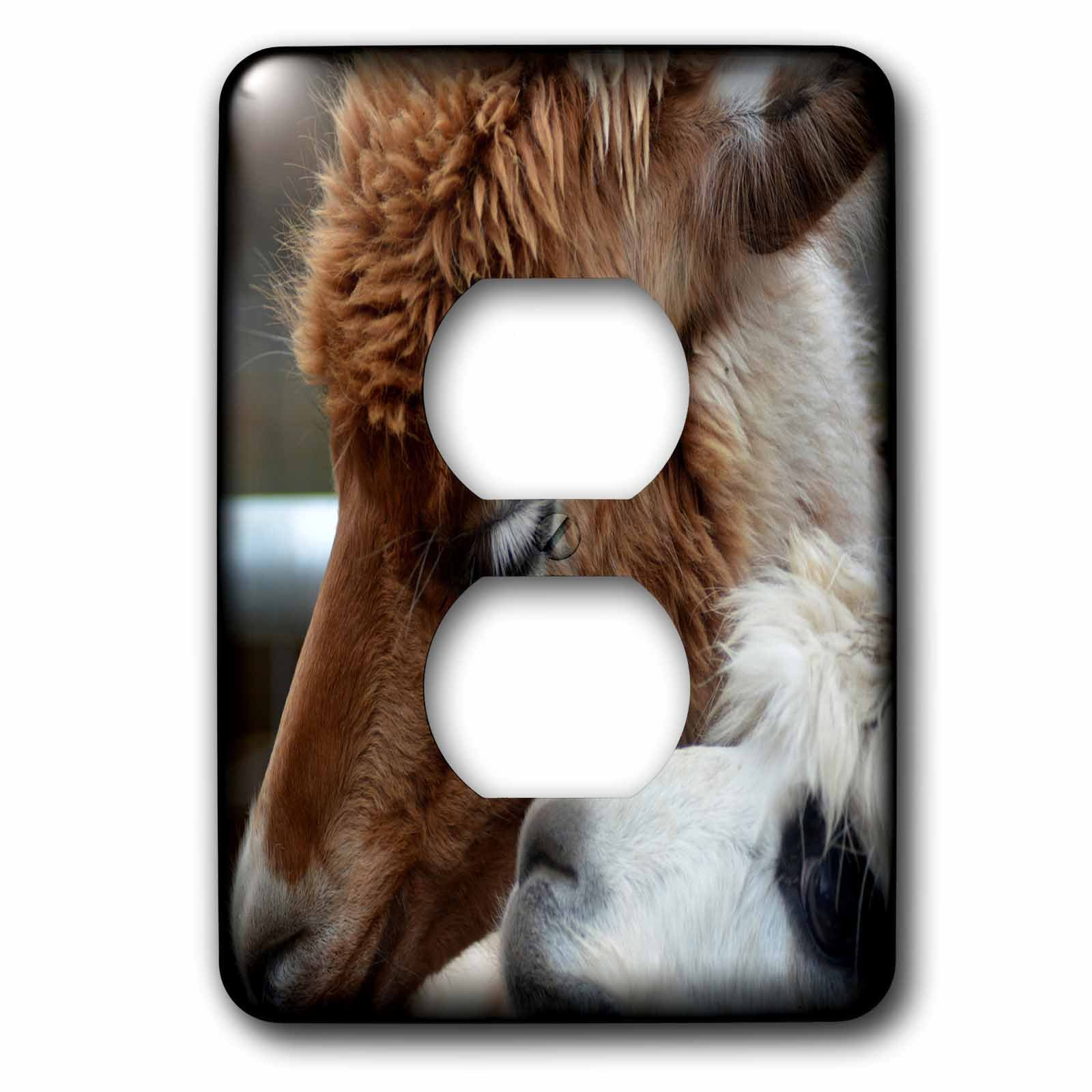 3dRose WhiteOaks Photography and Artwork - Lamas - Man Its Crowded up Here is a photo of two lamas crowding together - Light Switch Covers - 2 plug outlet cover (lsp_265333_6)