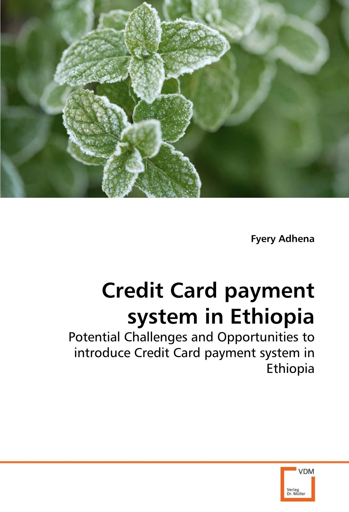 Credit Card payment system in Ethiopia: Potential Challenges and Opportunities to introduce Credit Card payment system in Ethiopia pdf epub