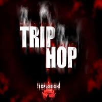 Free Trip Hop Music Radios