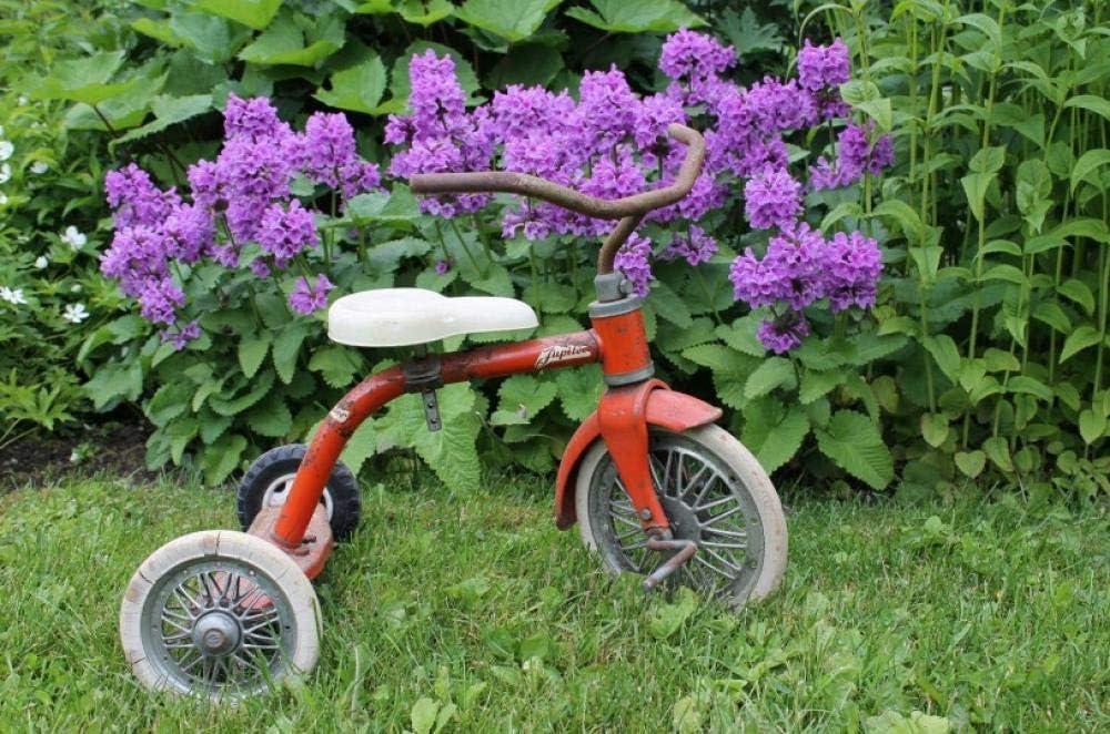 Rompecabezas 1000 Piezas Juegos para niños Adultos Triciclo para niños Decoración Modernapara El Hogar Regalo Coleccionables