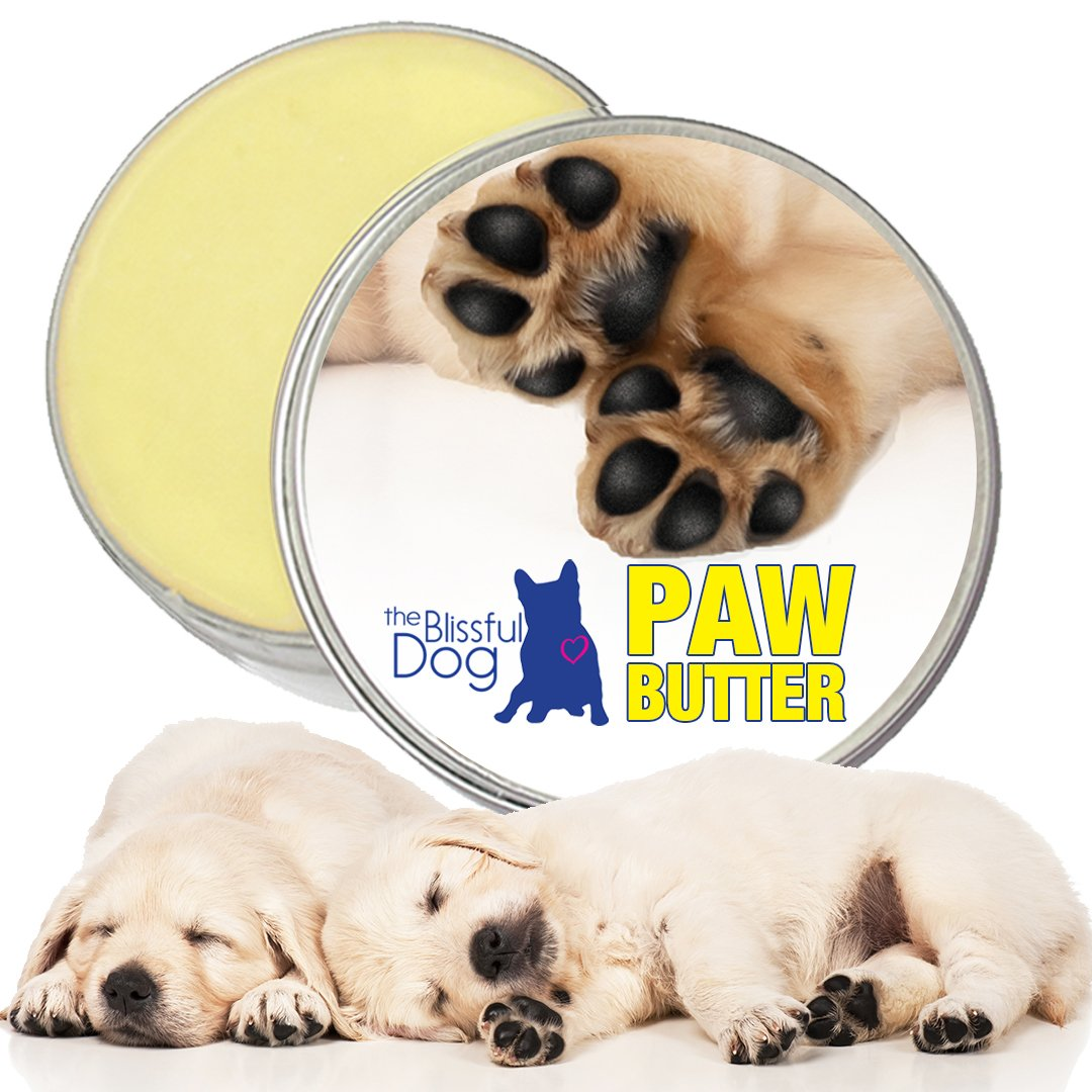 The Blissful Dog Paw Butter for Your Dog's Rough and Dry Paws, 2-Ounce by The Blissful Dog (Image #2)