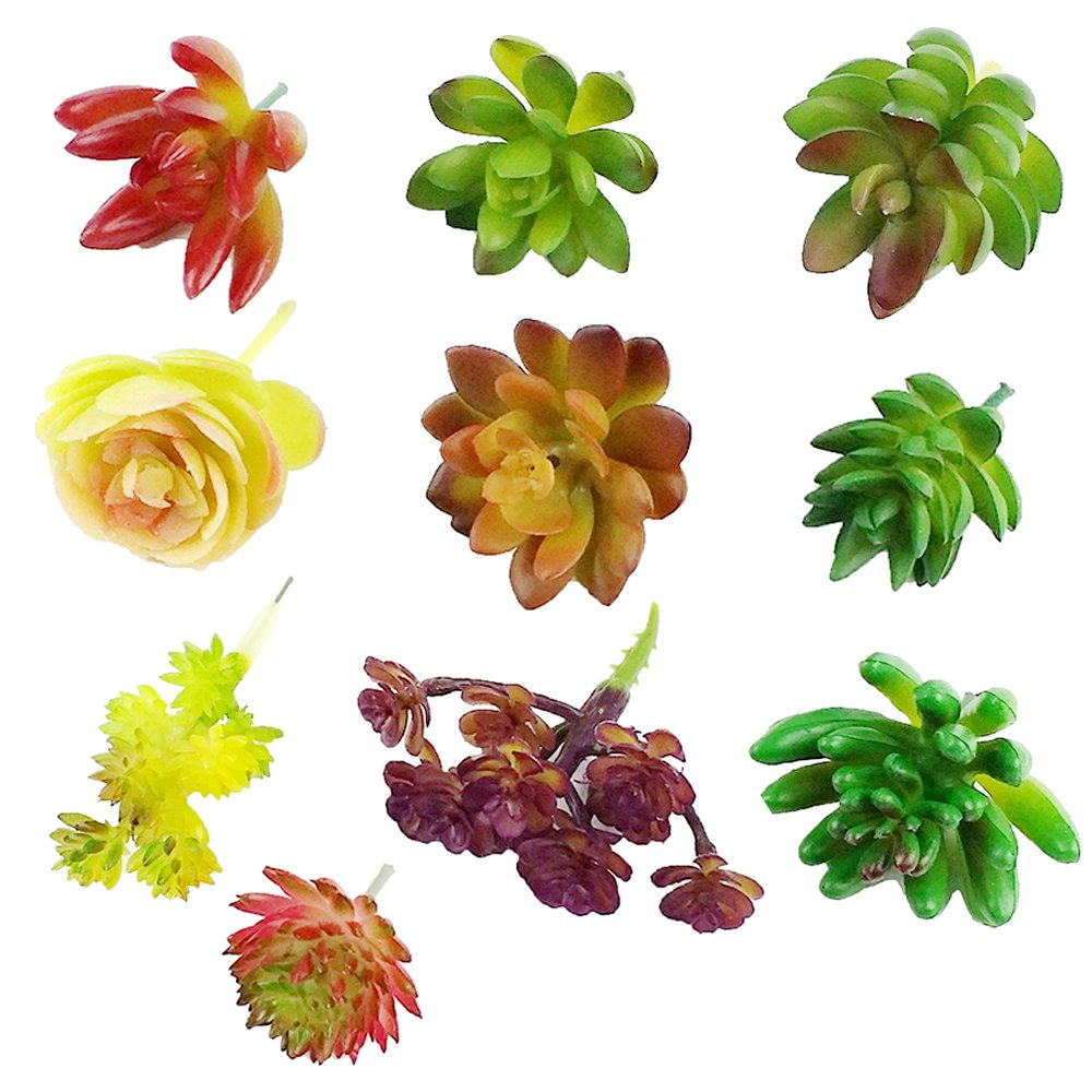 CEWOR 10pcs Artificial Succulents Different Kinds for Plants Wall Decoration DIY Materials by CEWOR