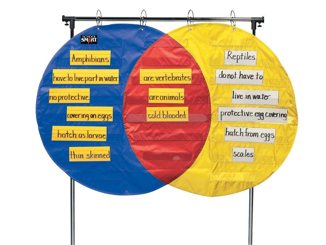 School Smart Venn Diagram Pocket Chart