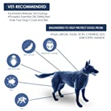Bearant Flea and Tick Collar for Dogs - 8 Months
