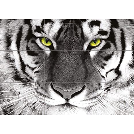 Amazon.com: Tigre blanco Arty Eye gigante Animal Póster ...